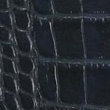 Croco bleu