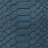 Python / Blue